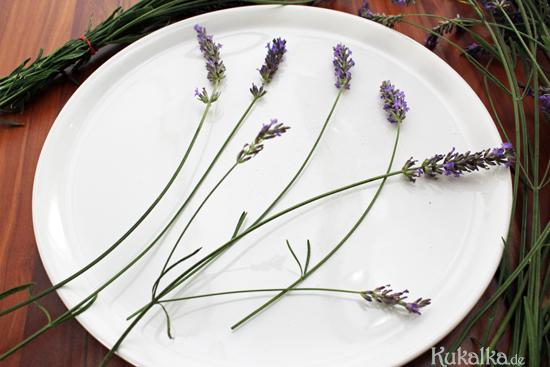 lavendel lavender